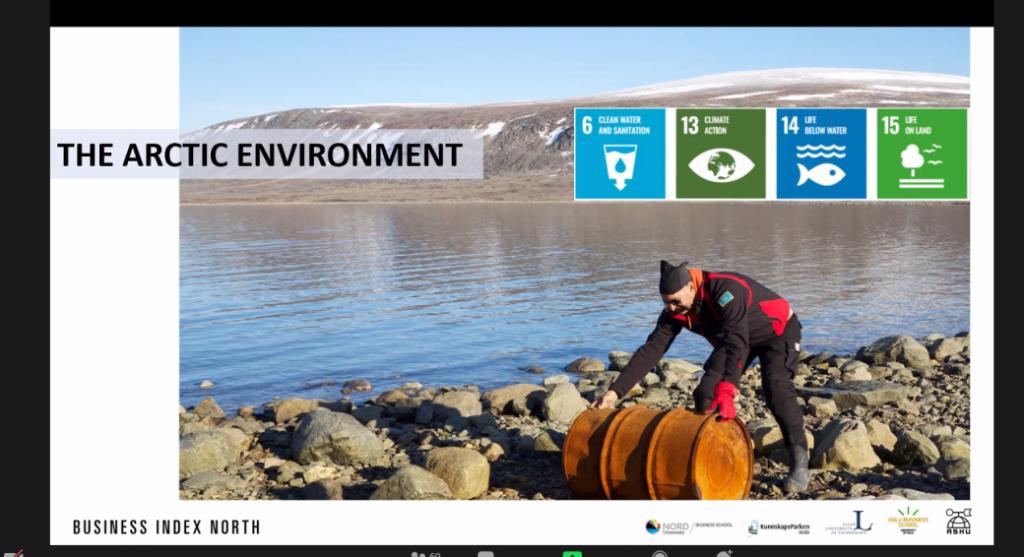 международный онлайн-семинар по проекту Business Index North (BIN) «SUSTAINABLE DEVELOPMENT IN THE ARCTIC: WHAT, HOW AND WHY?» («Устойчивое развитие Арктики: что, как и почему?»)