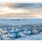 Вебинар «Как будут развиваться Арктические проекты в условиях современных экономических вызовов»