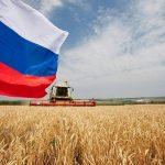 Четвертая конференция «Информационные технологии на службе агропромышленногокомплекса России» в режиме онлайн