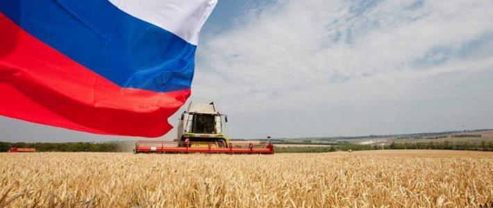 Четвертая конференция «Информационные технологии на службе агропромышленного комплекса России» в режиме онлайн