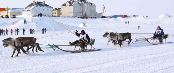 Заседание Экспертного совета Проектного офиса развития Арктики