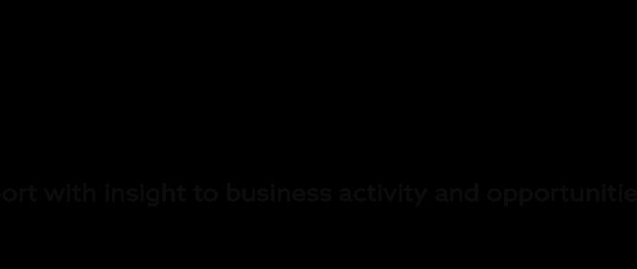Совещание партнёров проекта Business Index North (BIN) в формате ВКС