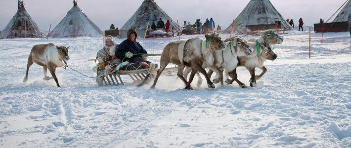 Заседание Экспертного совета Проектного офиса развития Арктики, посвященное проблемам хозяйственной деятельности коренного населения народов Севера на территориях своего проживания