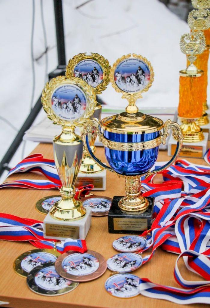 Ежегодный Чемпионат и Первенство России по ездовому спорту